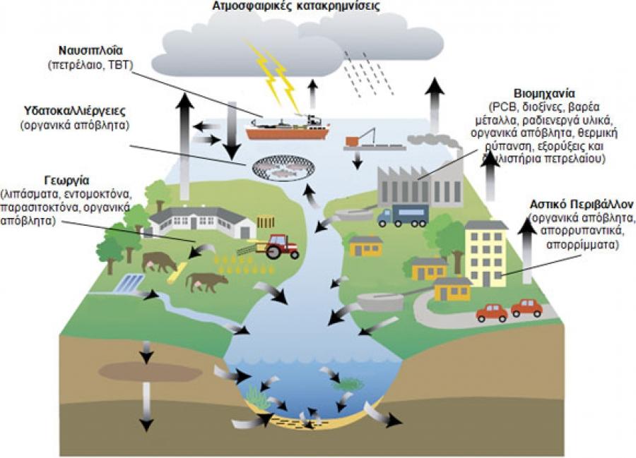 Φυτοφάρμακα, βαρέα μέταλλα και περιβαλλοντική ρύπανση στην τροφή